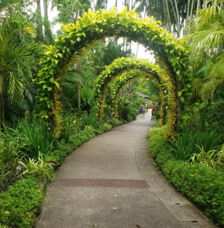 UNESCO World Heritage Site Singapore Botanic Gardens Green Pathway