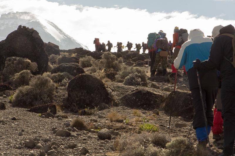 Line Of Backpackers Hiking Up Mount Kilimanjaro